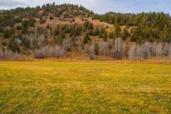 Pine Creek Ranch