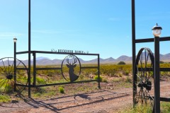 Buckhorn Ranch - New Mexico Cattle and Hunting Ranch