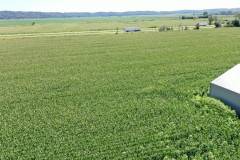 220 Acres in Mills County, IA