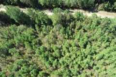 UNDER CONTRACT!! 20.23 Acres of Hunting and Residential Land For Sale in Robeson County NC!