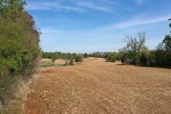 Hardeman County, TN Hatchie Riverfront Farm & Ranch For Sale