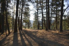 Foley Butte Ranch