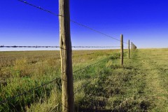Farm & Cattle Ranch with Home For Sale in Wallace County, KS