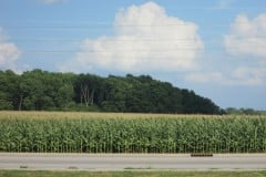 Prime Commercial Land! 147.93 Acres, White County, Indiana