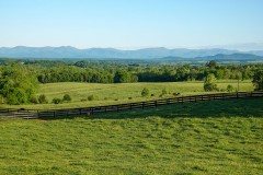 Linden Farm