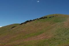 Spaulding Canyon Bulk Land