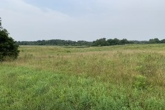 Income producing property located in Marion County