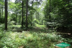 50 ac - Hunting & Home or Camp Surrounded by National Forest