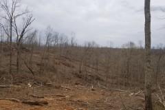 Buffalo Ridges Tract #4