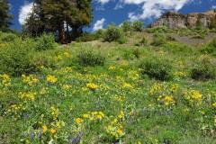 Pass Creek Ranch
