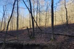 Buffalo Ridges Tract #5