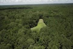 1774 Acres in Adams County in Natchez, MS