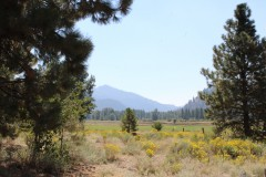 Elk Valley Ranch