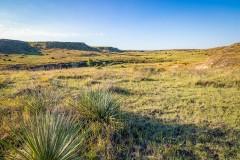 Pennington Ranch